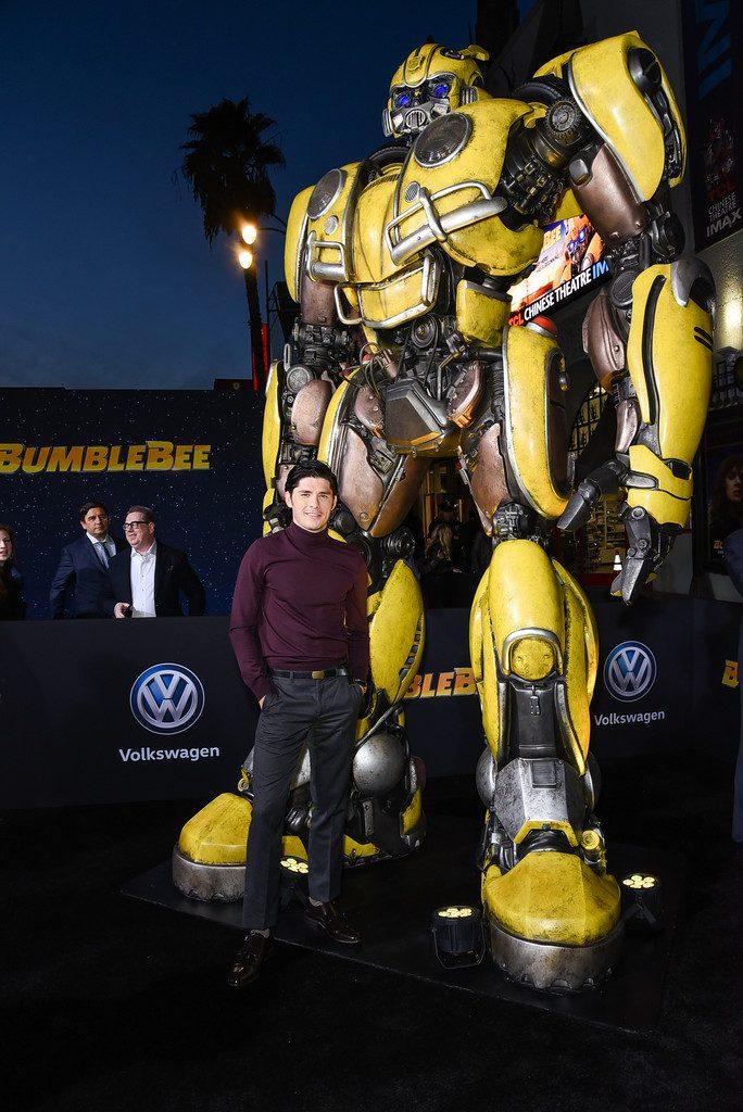 Bumblebee new interview Ricardo Hoyos Tripp